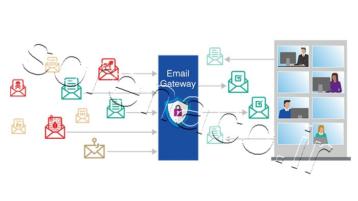 Email Security and Protection